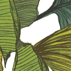 close up of monstera leaf green wall panels
